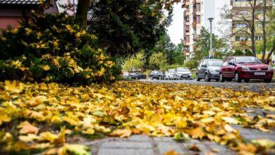 Jesień to trudny czas dla kierowców. O czym pamiętać przygotowując do niej samochód?